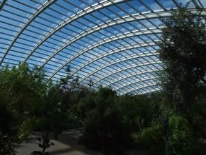 greenhouse-703047_1280